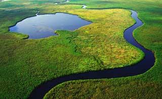 Okavango panhandle