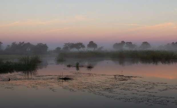 delta-flooded