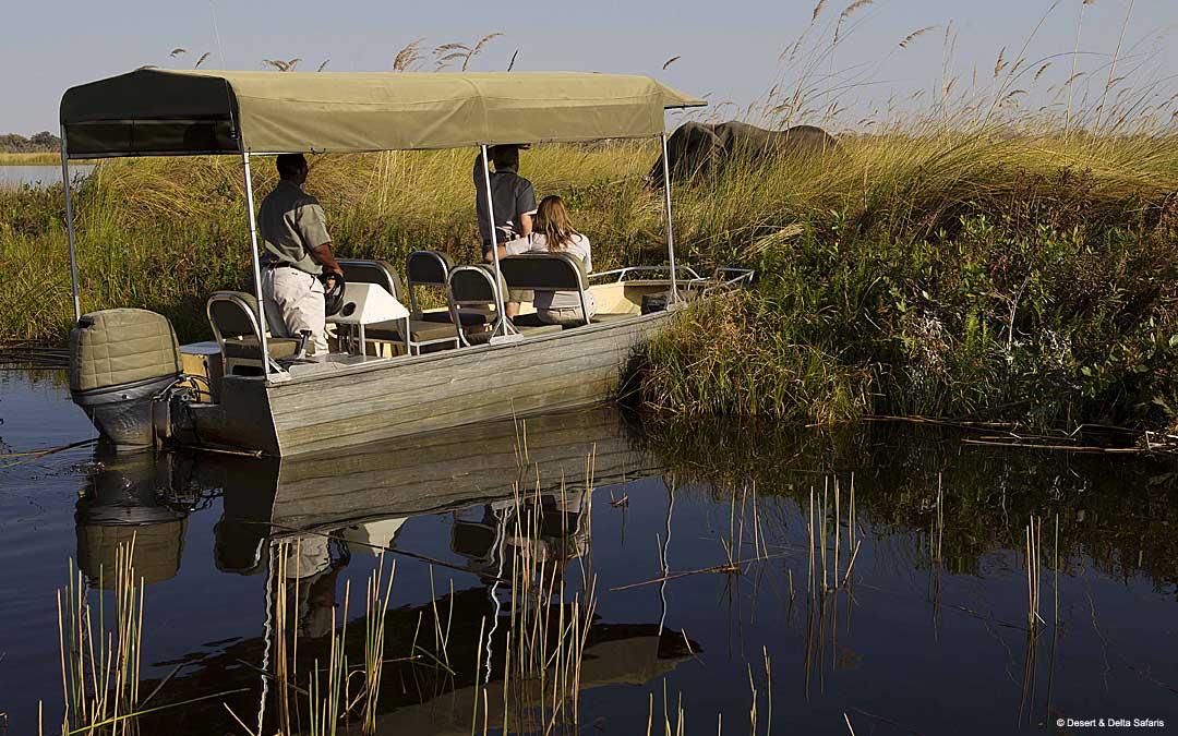 Delta river boats