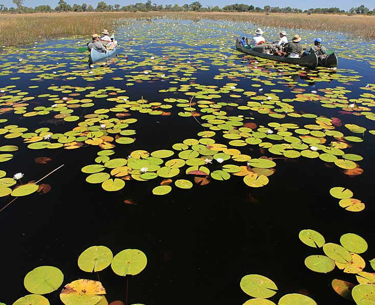 Lin-Sel-Kwando-canoes-lilie