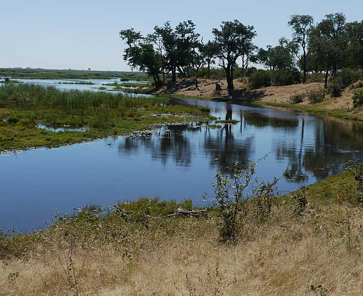 Linyanti-river