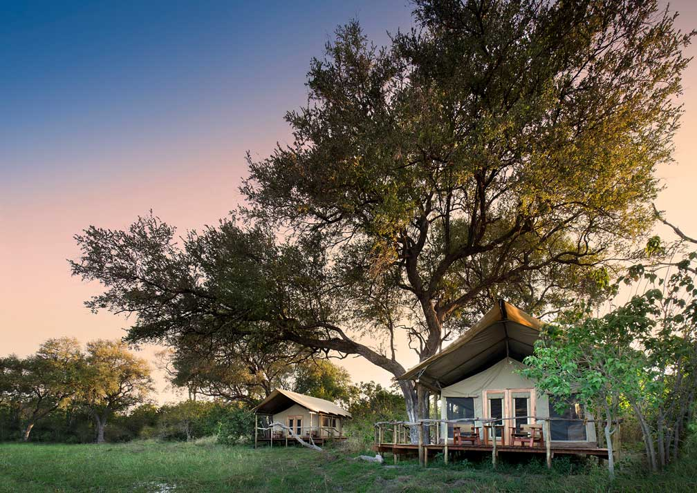 Guest tents at Khwai Tented Camp