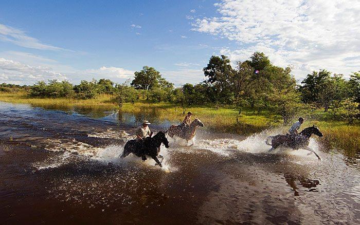 Motswiri-Camp-horse-riding