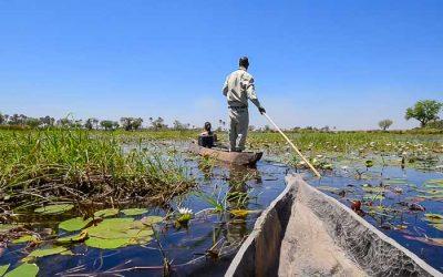 Okavango Delta mokoro rides