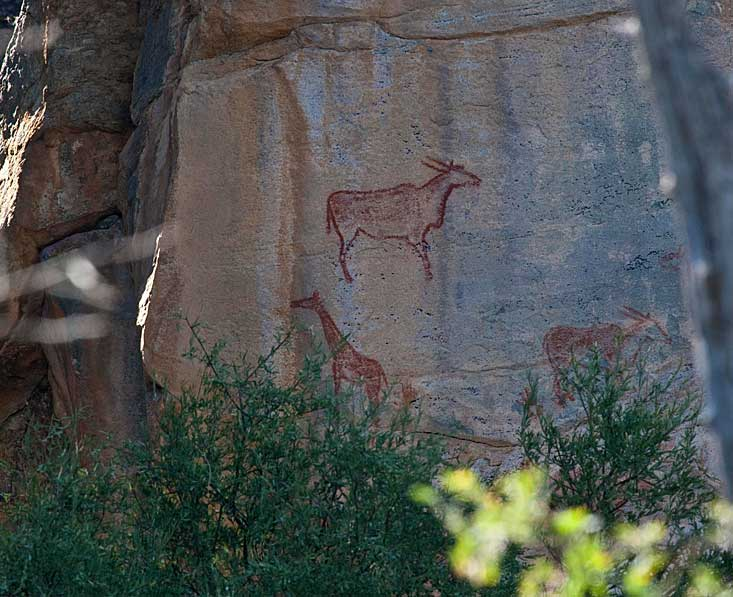 Tsodilo-hills-rock-art