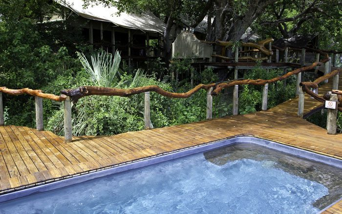 Tubu-tree-camp-pool
