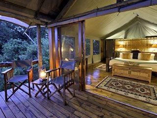Tubu-tree-camp