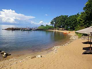 blue-zebra-beach