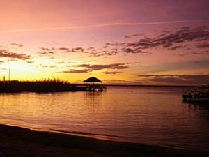 blue-zebra-sunset