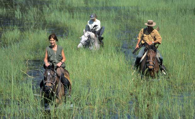 horse-back-safaris