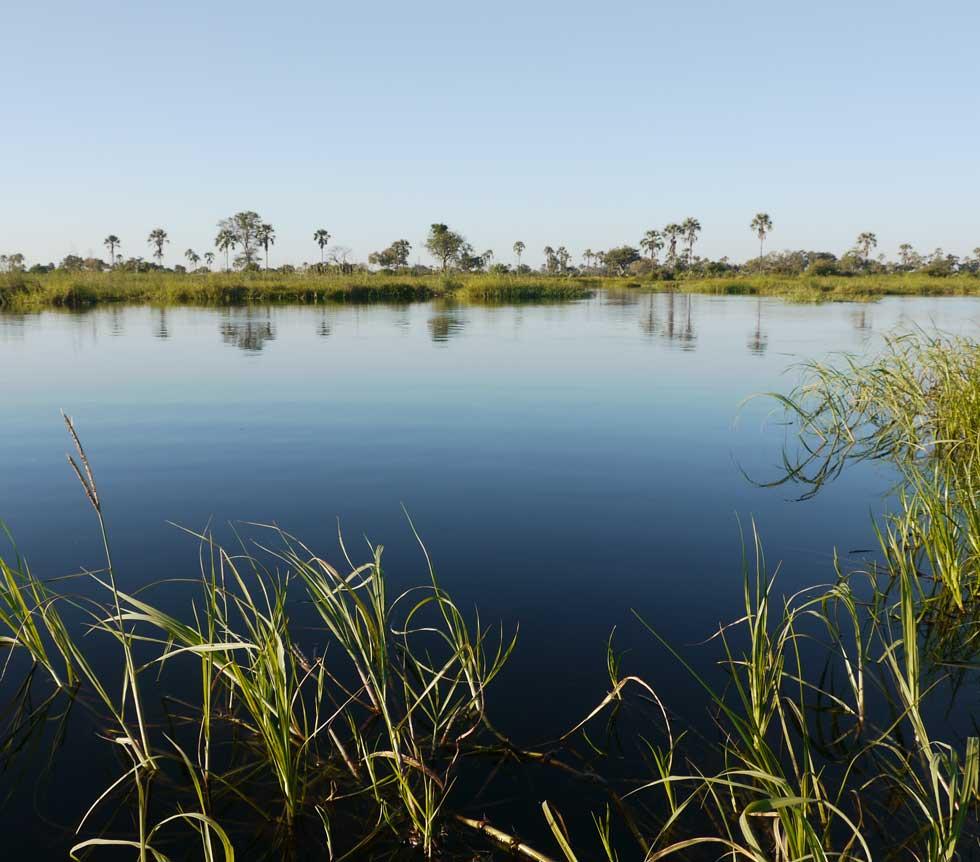 Flooded Okavango Delta
