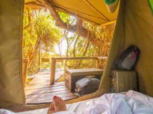 Guest tent at Oddballs