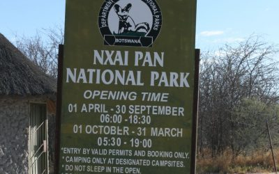 The Magic of Nxai Pan