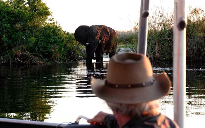 Setari boat safari
