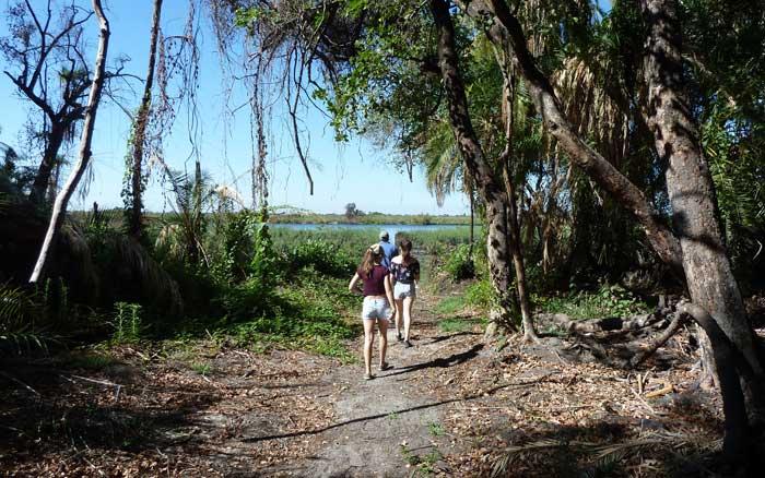 Setari bush walk