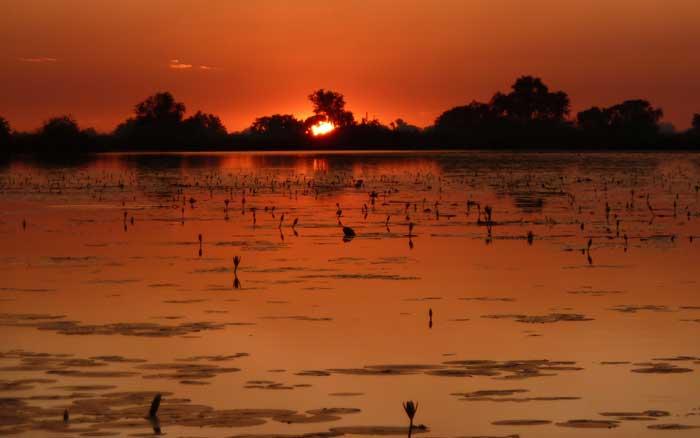 Setari19-G-sunset