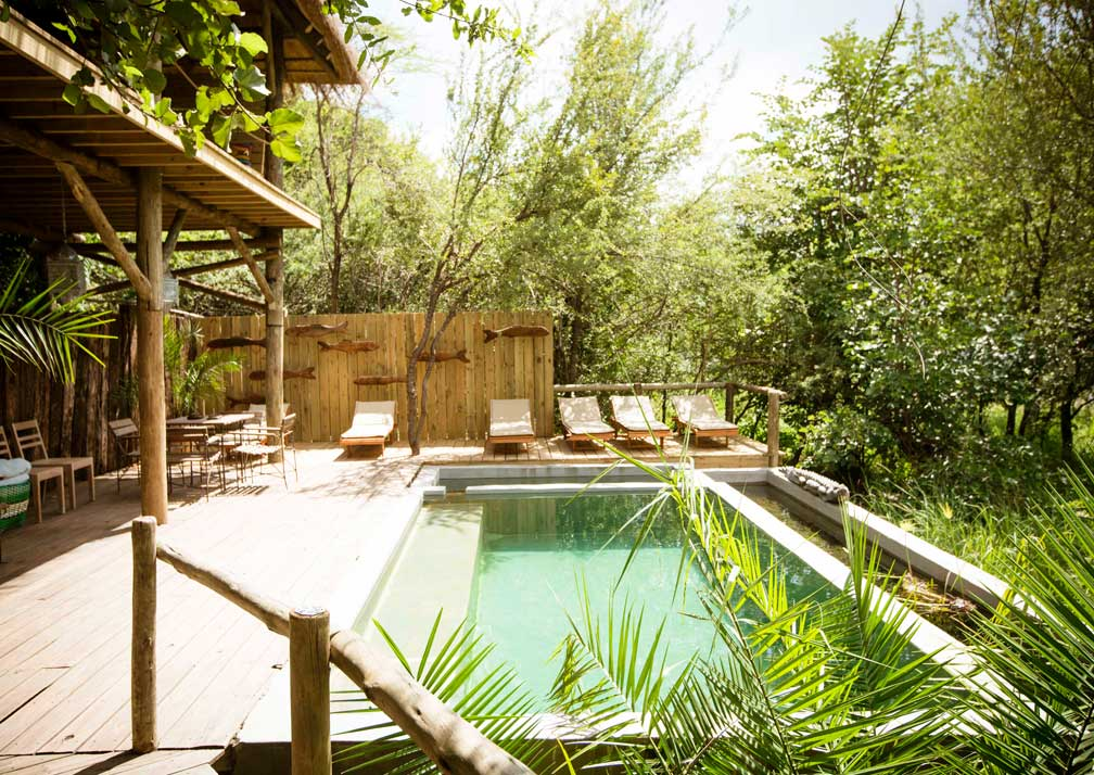 Chobe Bakwena Lodge pool