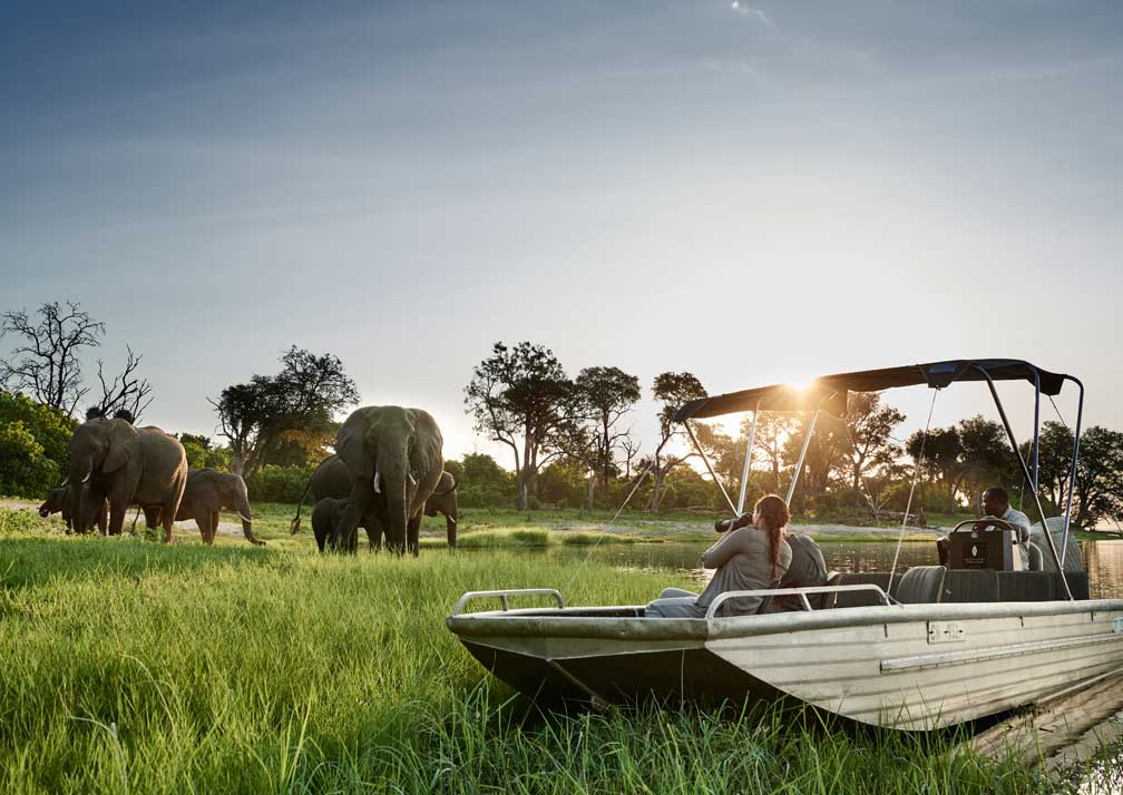 Sanctuary Chobe Chilwero elephant safari