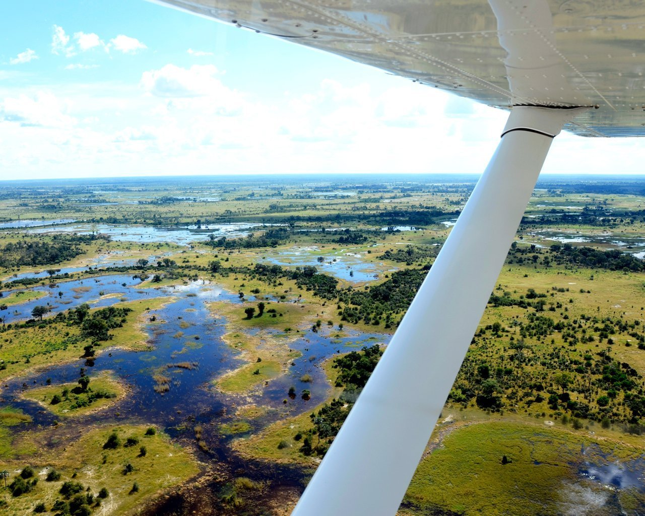 Okavango-G19-1