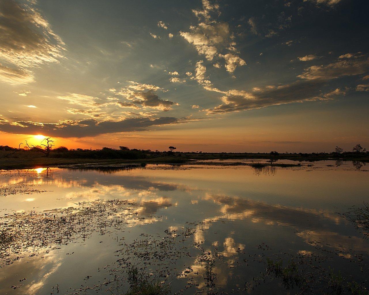 Okavango-G19-5