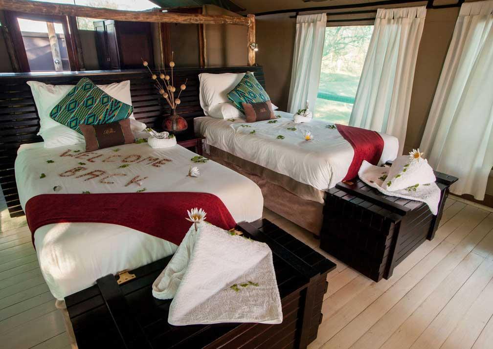 Pom Pom Camp twin bedroom