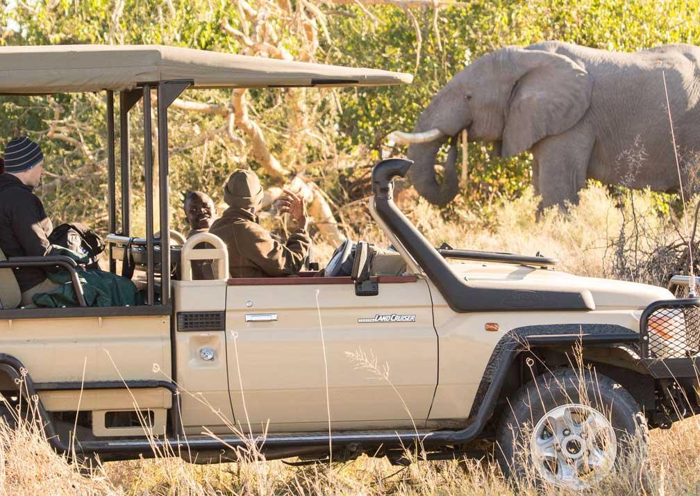 Rra Dinare elephant safari
