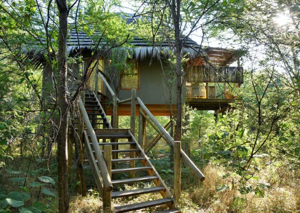 Chobe Bakwena Lodge treetop exterior