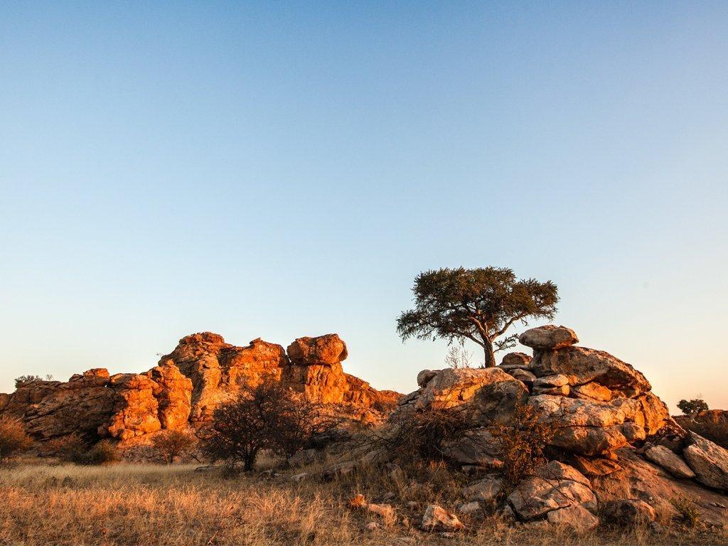 Tuli Block Botswana, information on