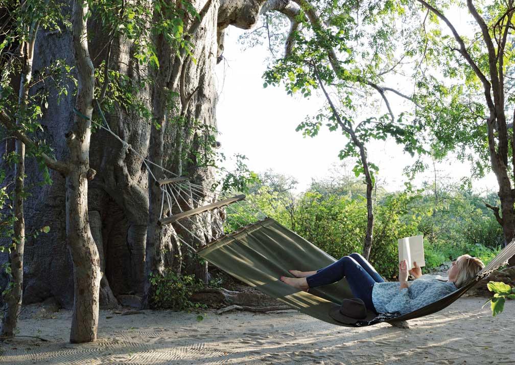 Planet Baobab hammock