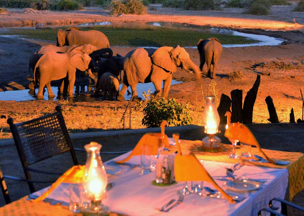 Elephant Valley Lodge outdoor seating and elephants