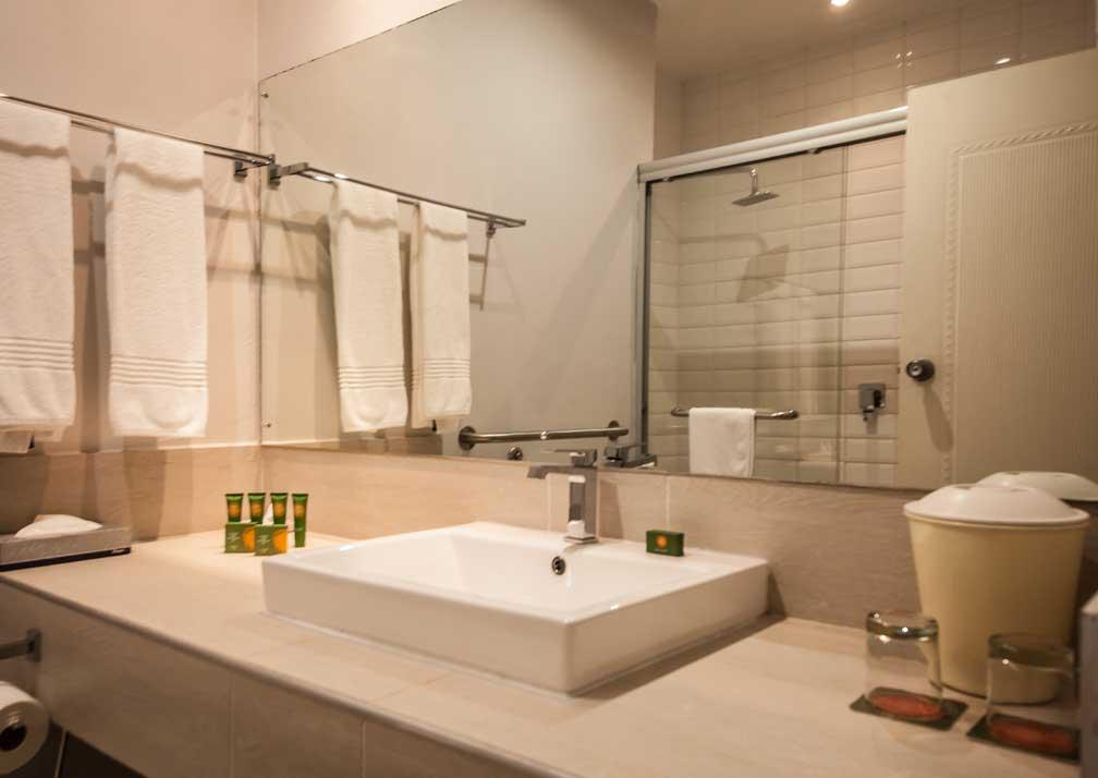 Chobe Safari Lodge river room bathroom