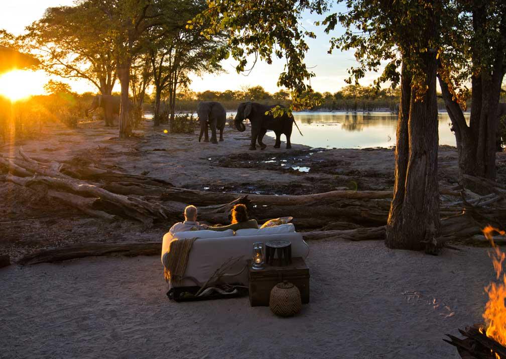 Hyena Pan elephants at night