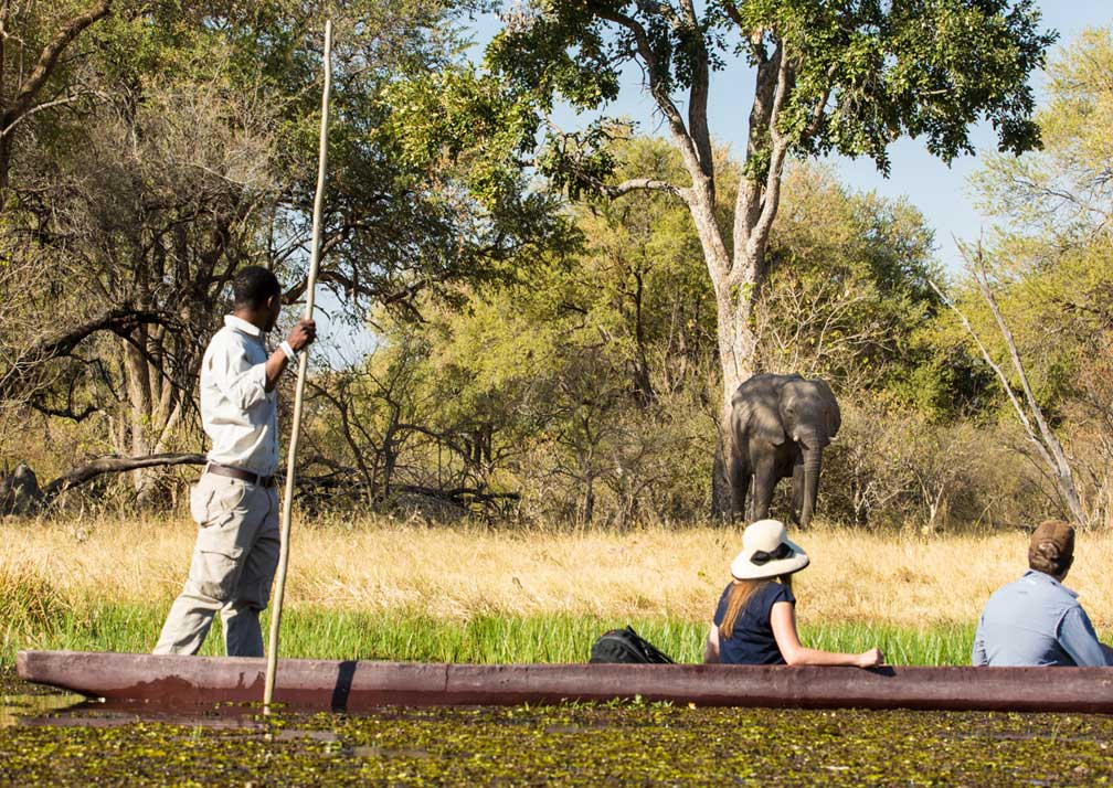 Little Machaba Camp boat tour and elephant