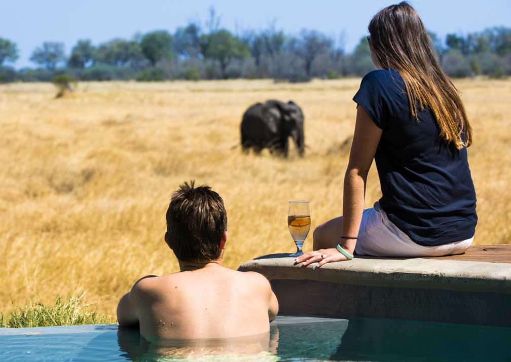 Machaba Camp pool with elephant