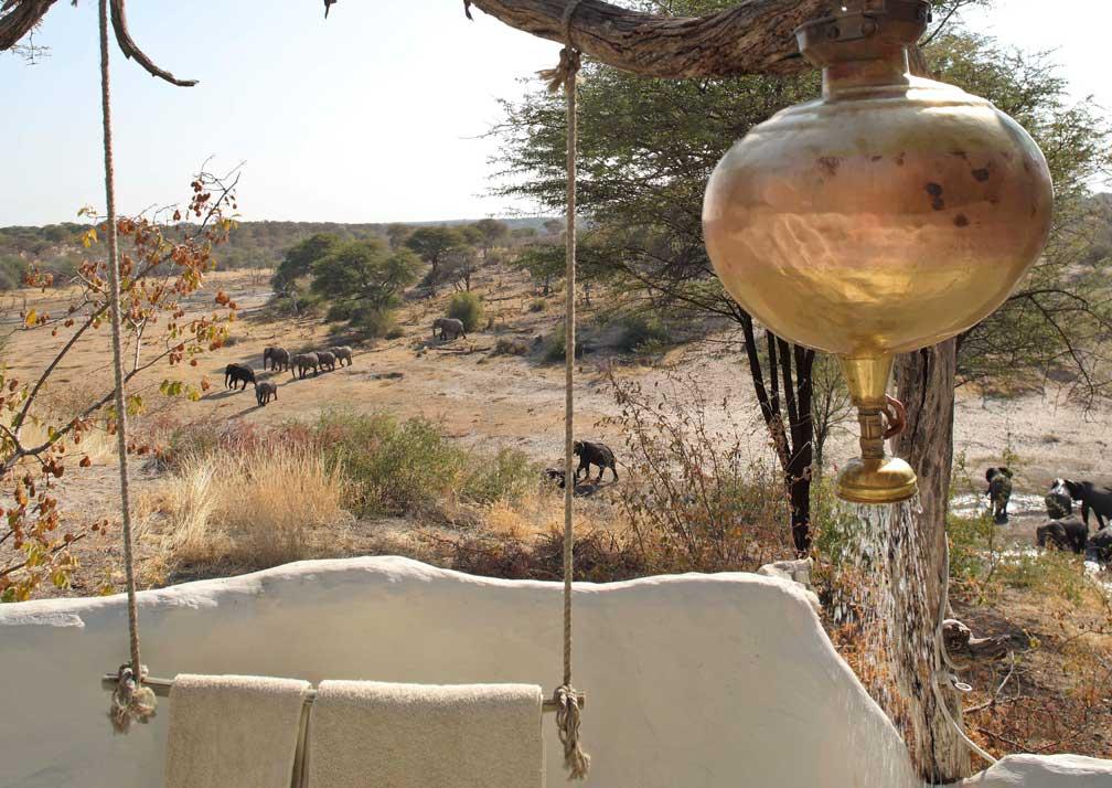 Meno a Kwena elephant view