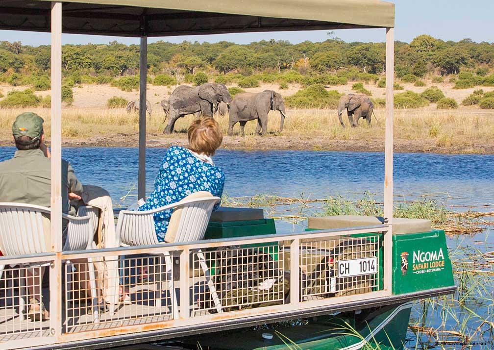 Ngoma Safari Lodge elephants