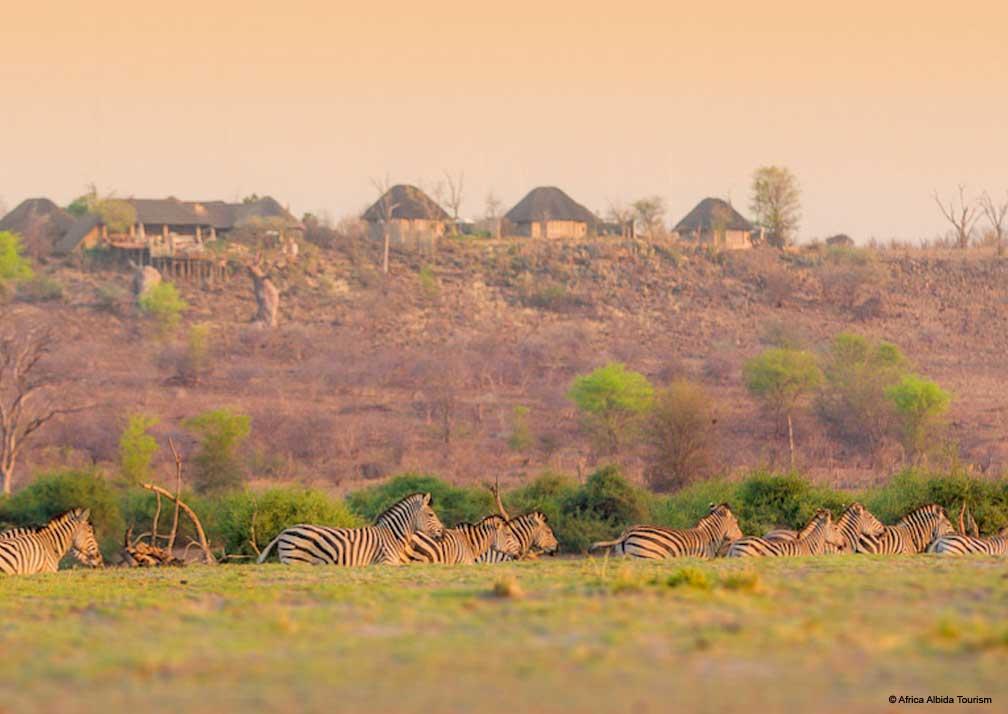 Ngoma Safari Lodge zebras