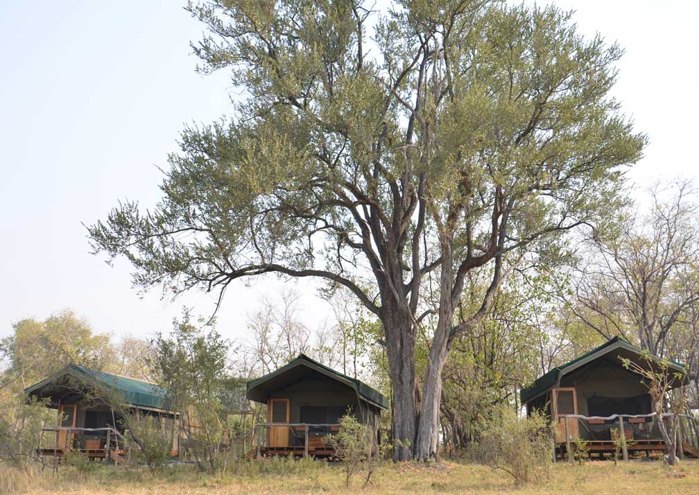 Sango Safari Camp tents exterior