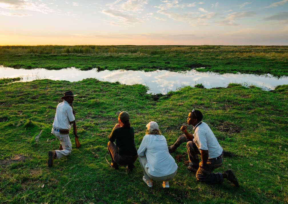 Linyanti Expeditions walking safari