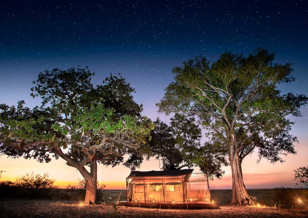 Linyanti Expeditions tent at night